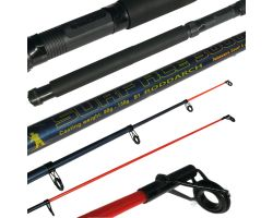 Roddarch 10FT Telescopic Beach and Pier Rod